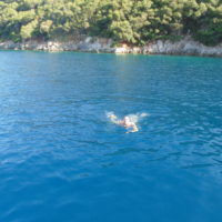 ionian_discoveries_kefalonia_and_ithaca (32)